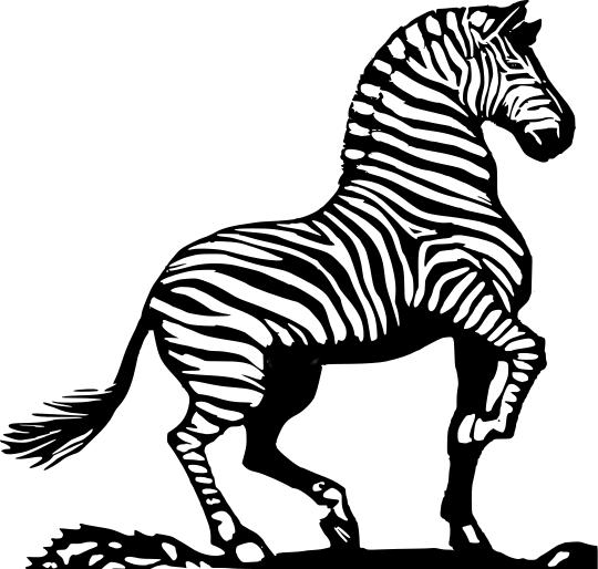 zebra bold - http://www.wpclipart.com/animals/Z/zebra_bold.png.html