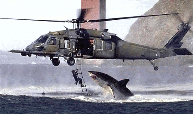 Reason: this one was a great white jumping close to a copter