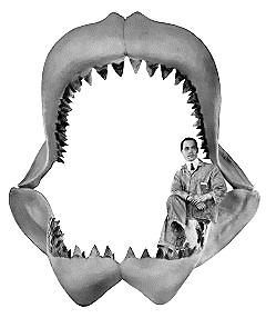 Макет челюстей мегалодона.