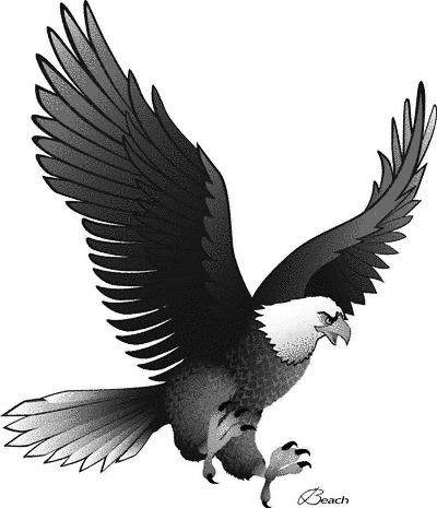 Eagle AF 1 - /armed_services/fighting_eagles/Eagle_AF_1.png.html
