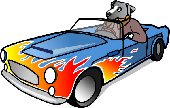 Dog In A Sports Car