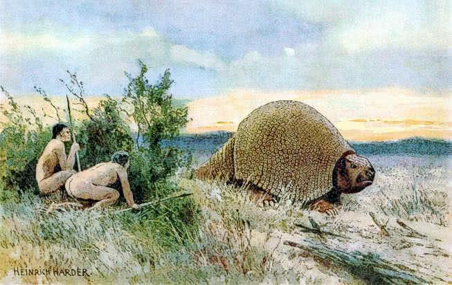 glyptodon animalsextinctdinosaurgdinosaurglyptodon
