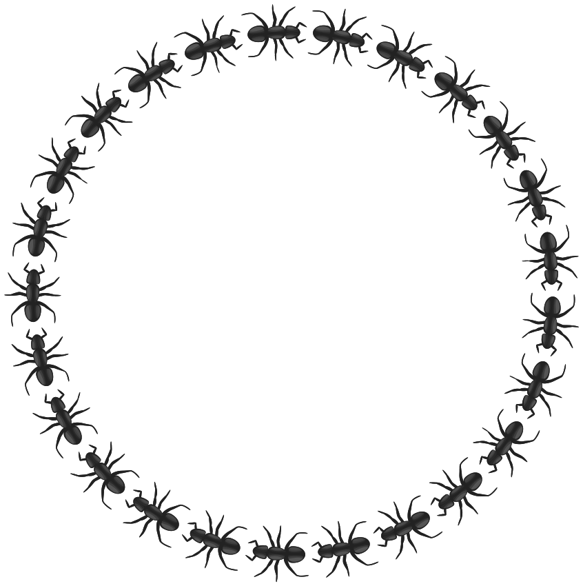 ant border circle - /page_frames/animal/ant/ant_border_circle.png.html