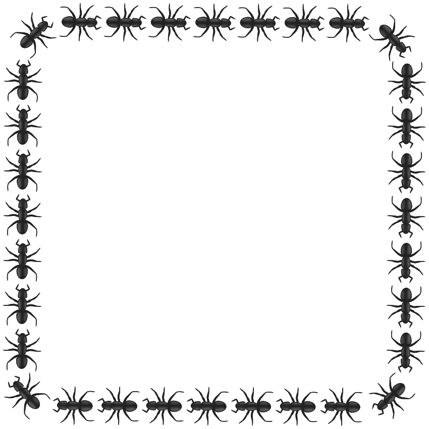 ant border square pageframesanimalantantborder