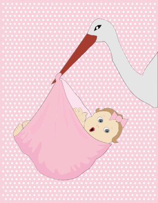 Stork Baby Girl People Baby Baby 4 Stork Baby Girl Png Html