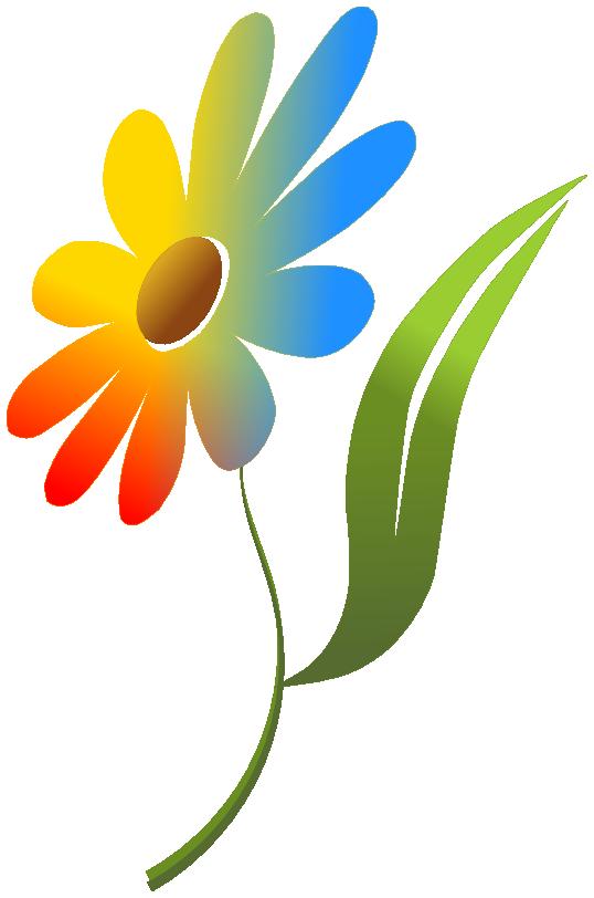 flower multi color - /plants/flowers/colors/flower_multi ...