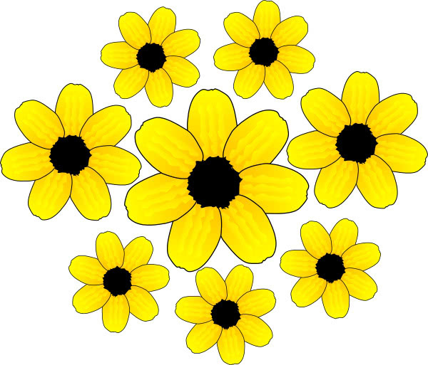 yellow flowers - /plants/flowers/colors/yellow_flower/yellow_flowers ...