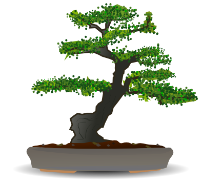 Bonsai tree plants trees bonzai bonsai for Bonsai tree pics