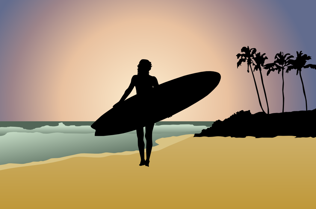 surfer silhoutte   recreation beach pool surf surfer