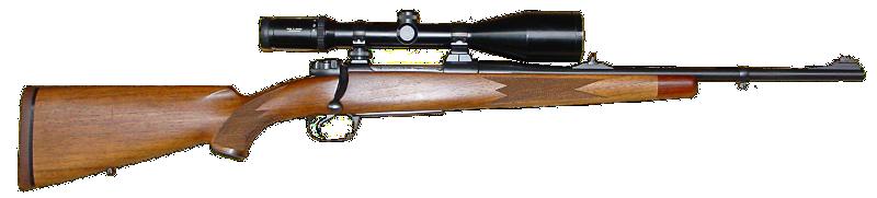 Modern Hunting Rifle - /recreation/sports/hunting/Modern ...