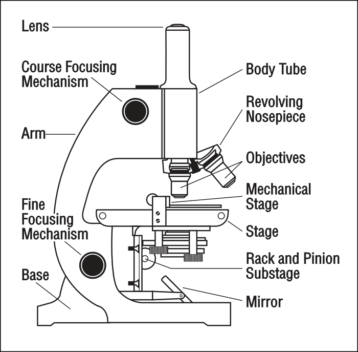 Microscope With Labels Science Tools Microscope