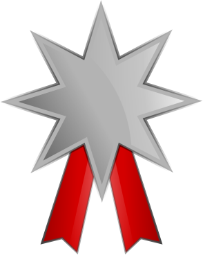 Silver Medal 4
