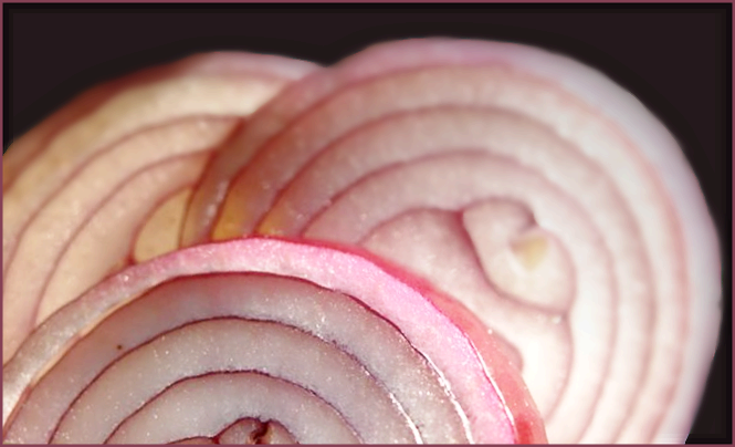 Red onion closeup