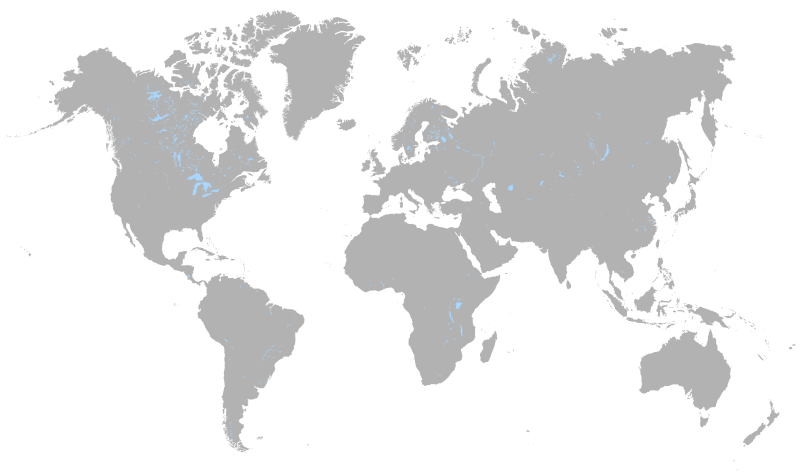 Black World Map Png World Map Simple
