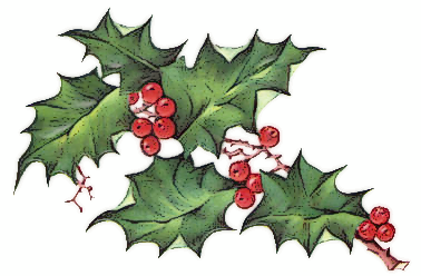 Image result for holy and ivy clipart