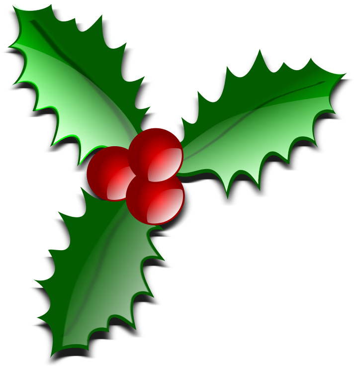 Holly glossy holiday christmas holly holly for Holl image