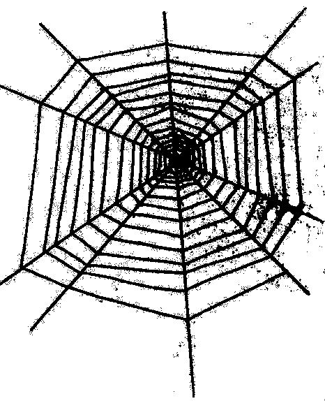 cobweb - /holiday/halloween/spider/cobweb.png.html