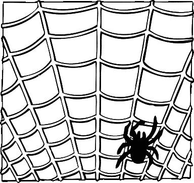 hukum sarang laba-laba