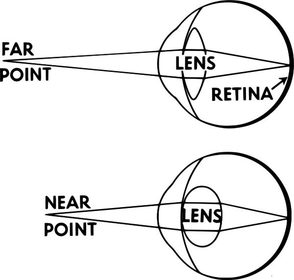 accommodation eyesight  medical  anatomy  eye