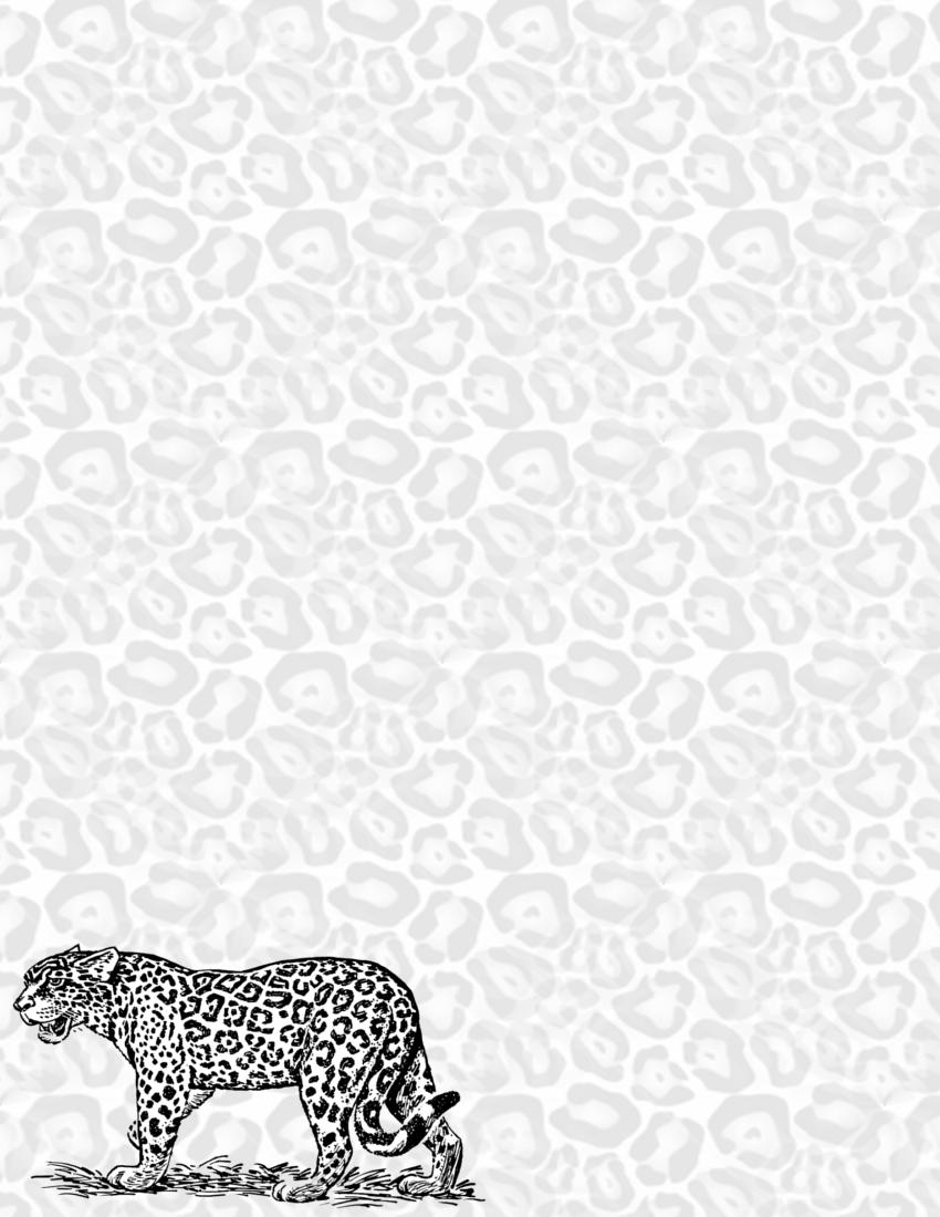 jaguar page and background   page frames animal jaguar
