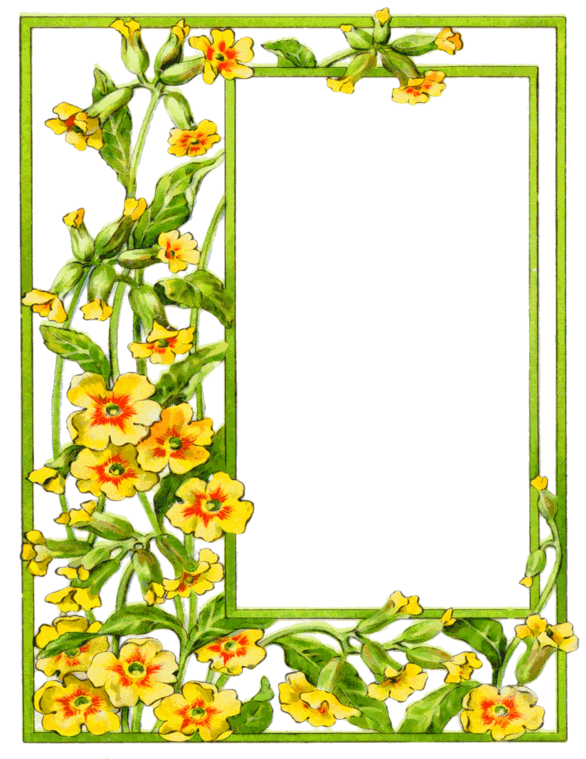 card frame yellow flowers  /page_frames/floral/card_frame_yellow