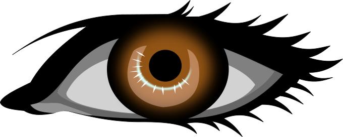 brown eye - /people/bodypart/eye/eyes_1/brown_eye.png.html