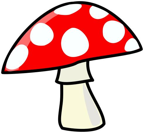 One aspen mushroom