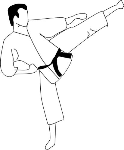 Karate Kick Recreation Sports Martial Arts Karate