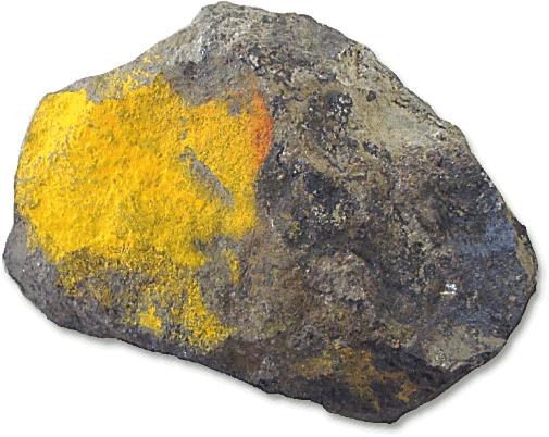 Hawleyite orange yellow earthy coating - /rocks_minerals/H/Hawleyite ...