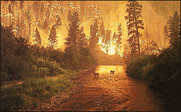 http://www.wpclipart.com/scenic/Deer_fire.png
