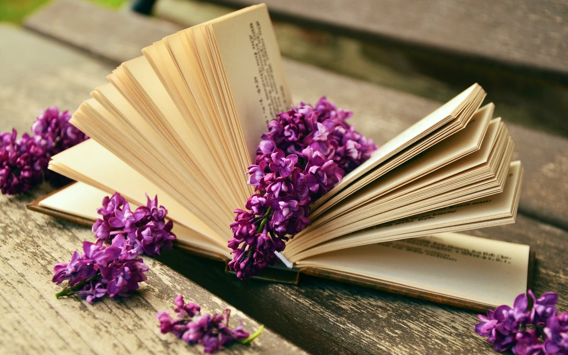 good book and Lilacs