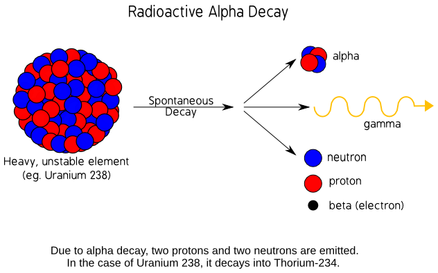 Carbon Dating  HyperPhysics Concepts