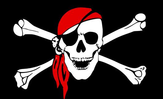 Pirates Logo Skull Embed